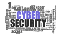 Top 5 Cyber Actions To Protect Your Business